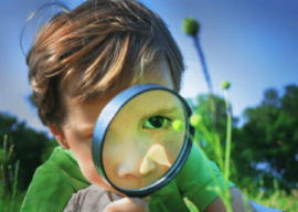 Exploring the World Inside Your Kid