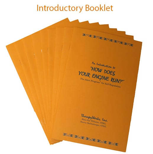 introductory-booklet